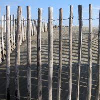 Ganivelle bois : tout sur cette clôture tendance
